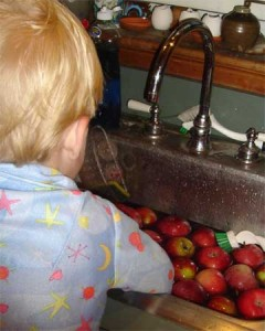 My little apple washer.