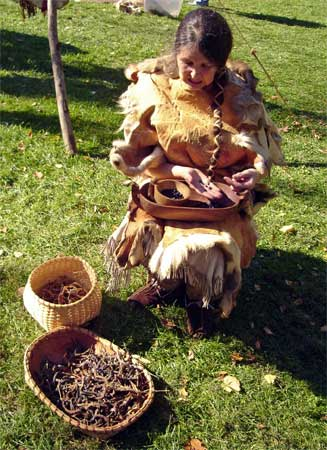 Susan of Heart to Hearth sorting beans at the fall 2008 Powwow.