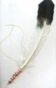 The porcupine quill plait, taught in Porcupine Quillwork Part 1, is wrapped around this feather.