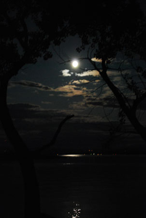 gnightmoon_0005fx1