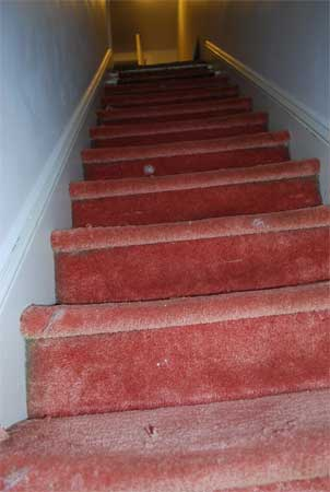 The stairs going to my studio were covered in a lovely pinky-red carpet.